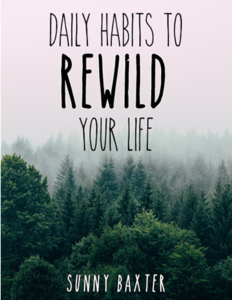 E-book cover - Daily habits to Rewild your life