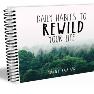 Daily Habits to Rewild Your Life - Book